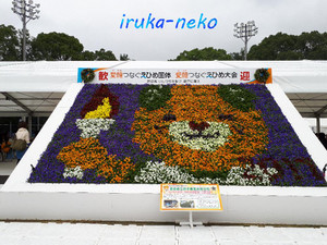 20171007kokutai8