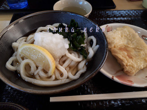 20190103udon1